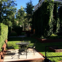 1315 11th - southeast patio 08.2014